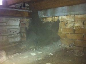 Termite workings bridging metal antcapping.